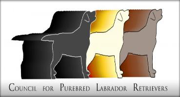 CPLR Council for purebred Labrador Retrievers