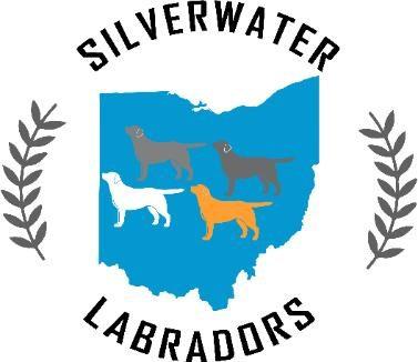 Silverwater Labs